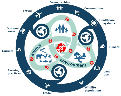 ONE HEALTH. Preparing for vector borne virus outbreaks in a chaning world : a One Health Approach